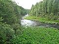 Река Большой Киалим - panoramio (1).jpg