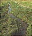 Река Днеприк в окрестности пос Днеприк иллюстрация.jpg