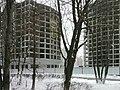 Улица Строителей - Лесная, новостройки 2011 - panoramio.jpg