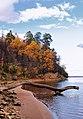 """Урочище """"Большой бор"""". Правый берег реки Кама. Национальный парк """"Нижняя Кама"""".jpg"""