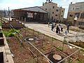 גן לאומי סבסטיה שומרון 047.jpg