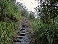 三仰峰山路 - Trail to Sanyan Peak - 2015.11 - panoramio.jpg