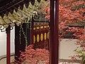 南京瞻园秋景三.JPG