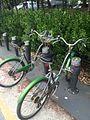 페달로 자전거.jpg