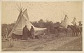 -Native American Women and Horses by Teepee in Camp- MET DP115232.jpg
