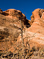 04 Devils Garden Trail 04 (4119015295).jpg