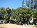 06017jfBahay Puso Virgen Milagrosa Rosario Seminary Balanga City Bataanfvf 18.JPG