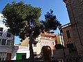 07157 Port d'Andratx, Illes Balears, Spain - panoramio (26).jpg