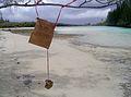 09JAN2011 063.jpg