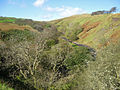 111007 Glengarnock from castle ridge.jpg