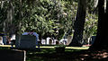 120925e 0507 Old White Meeting House Ruins and Cemetery Peer Thru Trees At Headstones.jpg