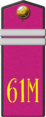 61st Motorised Rifle Regiment