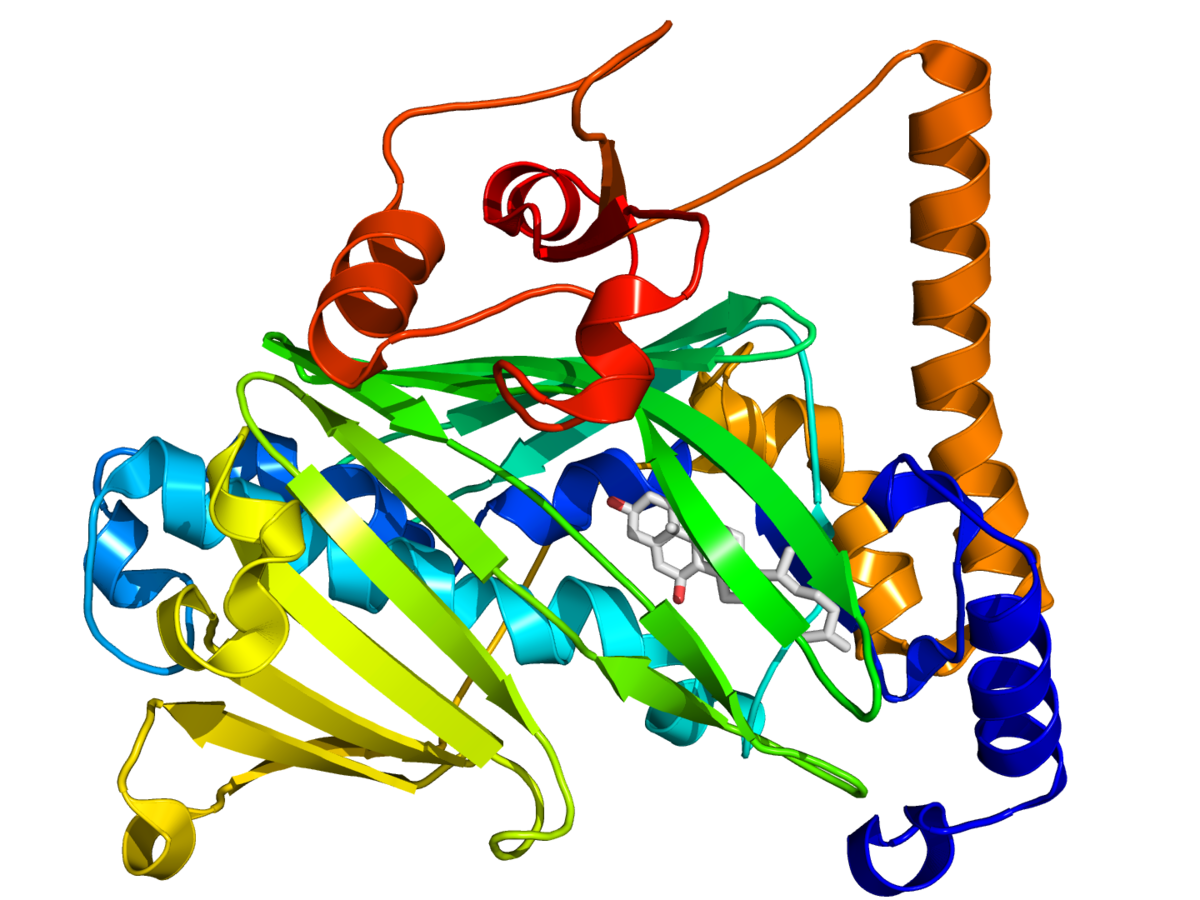 oxysterol-binding protein