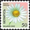 2002. Stamp of Belarus 0484.jpg