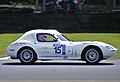 2008 Alice Powell Ginetta Junior Championship.jpg