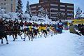 2010 Yukon Quest (4340854771).jpg