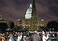 20111206-OC-RBN-8232 - Flickr - USDAgov.jpg