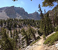 2014-09-15 11 15 29 View up the Bristlecone Trail and the Glacier Trail through sub-alpine forest in Great Basin National Park, Nevada.JPG