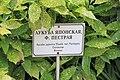 2014 Suchum, Ogród botaniczny (50).jpg
