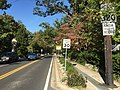 2016-10-18 15 40 32 View north along Maryland State Route 320 (Piney Branch Road) just north of Eastern Avenue in Takoma Park, Montgomery County, Maryland.jpg