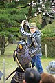 20160403 Himeji-Castle 3507 (26221545893).jpg