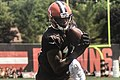 2016 Cleveland Browns Training Camp (28586124432).jpg