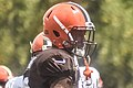 2016 Cleveland Browns Training Camp (28660290586).jpg