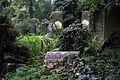 2370viki Cmentarz Żydowski na Ślężnej. Barbara Maliszewska.jpg