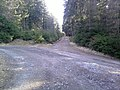 350 02 Lipová, Czech Republic - panoramio (12).jpg