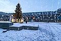 4 ianuarie 2015, Bucuresti, Parcul Al I Cuza, Canon 7D Mark II-5527 (16292385152).jpg
