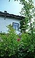 5349 Bojentsi, Bulgaria - panoramio (84).jpg