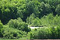 71-212-5010 Pryvorotsky SAM 9020.jpg