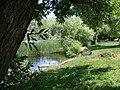 ANF Jackson Lake by Jose Henriquez-Santos (5759387035).jpg