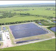 Algae fuel - Wikipedia