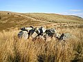 A pile of boulders that is NOT Bedd Crynddyn - geograph.org.uk - 1172647.jpg