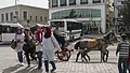 Adana horse and cart (34271945491) (2).jpg