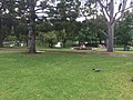 Adelaide SA 5000, Australia - panoramio (24).jpg