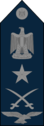 Air Marshal - Egyptian Air Force rank.png