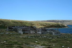 Ajax Bay - Some of the remaining buildings in 2008