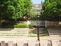 Akiva Gur Garden (5).JPG