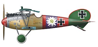 Paul Bäumer - Albatros D.V of Paul Bäumer while with Jagdstaffel 5