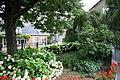 Alblasserdam (70) - Flickr - bertknot.jpg