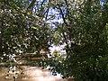 Aldeia de Romeu - 2.jpg