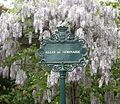 Allée du Séminaire, Paris 6.jpg