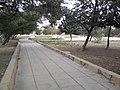 Alshora park.jpg