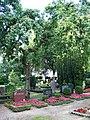 Alter Friedhof Wandsbek (Baum) - panoramio.jpg