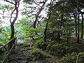 Am Eifelsteig bei Rohren - panoramio (1).jpg