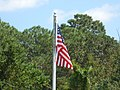 American Flag in Alabama Field.jpg