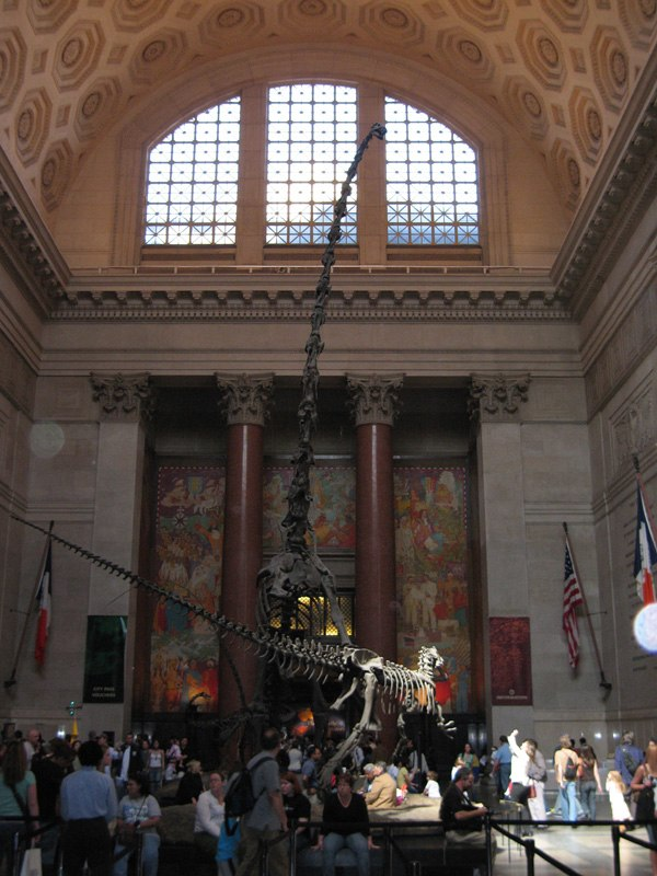 American Natural History Museum 467821248 0f115644b4