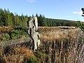 Ancient boundary stone near Salachy, Glen Oykel - geograph.org.uk - 597474.jpg